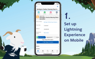 Set Up Lightning Experience on Mobile