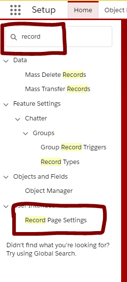 Record Page Settings